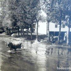 Fotografía antigua: ANTIGUA FOTOGRAFÍA AGUILAR DE CAMPOO, PALENCIA. CASTILLA Y LEÓN. 13 X 9 CM . Lote 94119120