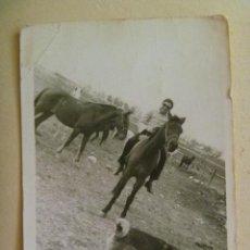 Fotografía antigua: FOTO DE JINETE A CABALLO CON PERRO PASTOR ALEMAN. Lote 98166883
