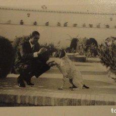 Fotografía antigua: ANTIGUA FOTOGRAFIA DE CHICO CON PERRO.AÑOS 60. Lote 104410315