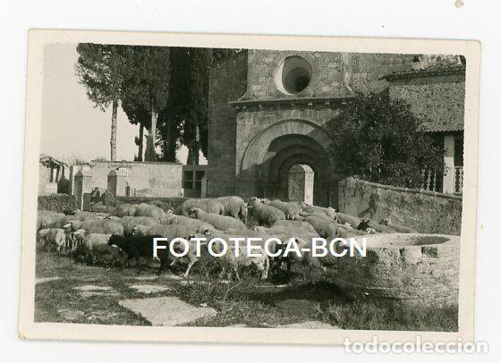 FOTO ORIGINAL ERMITA SANTA MARIA DE PORQUERES BANYOLES GUERRA CIVIL REBAÑO OVEJAS AÑO 1937 (Fotografía Antigua - Fotomecánica)