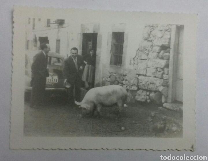 CANTABRIA. AÑOS 60S. (Fotografía Antigua - Fotomecánica)