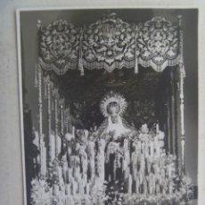Fotografía antigua: SEMANA SANTA DE SEVILLA : FOTO MARIA STMA. DEL REFUGIO, SAN BERNARDO. DE HARETON, 1968. Lote 119157599