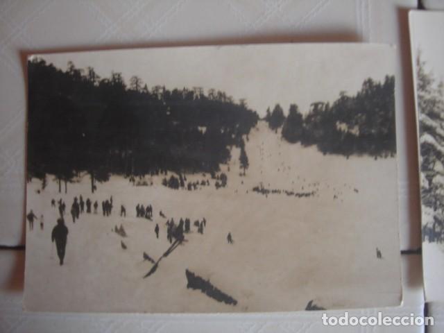 Fotografía antigua: Marruecos. Paseantes y bosques nevados en el Medio Atlas, alrededores de Ifrán. Años 60. 2 fotos - Foto 2 - 119438755