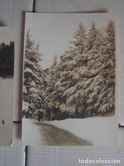 Fotografía antigua: Marruecos. Paseantes y bosques nevados en el Medio Atlas, alrededores de Ifrán. Años 60. 2 fotos - Foto 3 - 119438755
