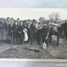 Fotografía antigua: ANTIGUA FOTO DE CAZA CON CAZADORES, MUY ANIMADA - ZONA SIERRA MORENA - AÑOS 20-30. Lote 127202155