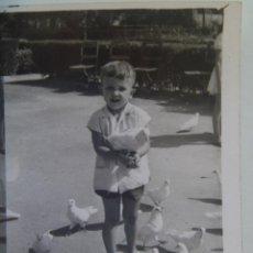 Fotografía antigua - MINUTERO FOTOGRAFO DEL PARQUE Mª LUISA SEVILLA : NIÑO EN PLAZA DE LAS PALOMAS , 1963 - 127859031