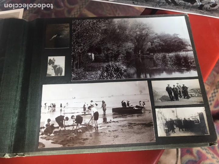 Fotografía antigua: Álbum con fotografías antiguas caza campo Caballos toros agricultura - Foto 6 - 132366993