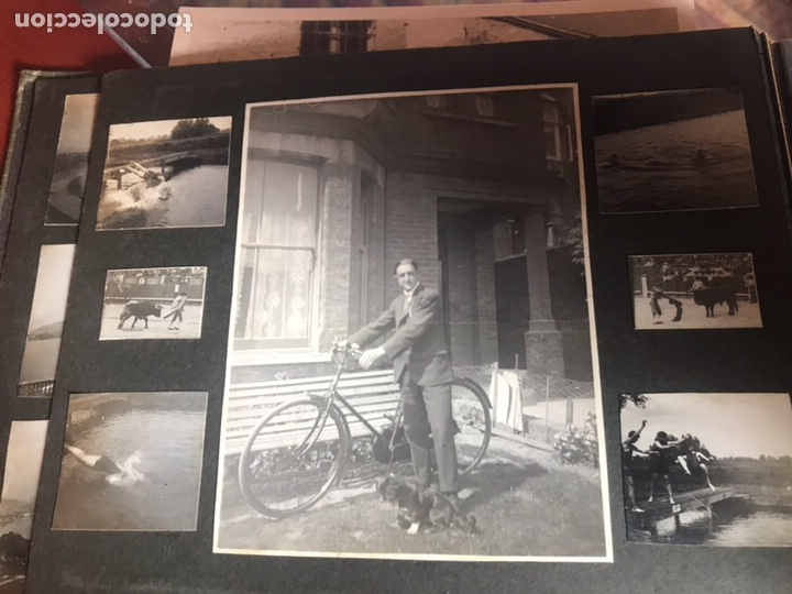 Fotografía antigua: Álbum con fotografías antiguas caza campo Caballos toros agricultura - Foto 7 - 132366993