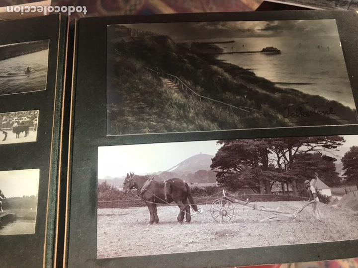 Fotografía antigua: Álbum con fotografías antiguas caza campo Caballos toros agricultura - Foto 8 - 132366993