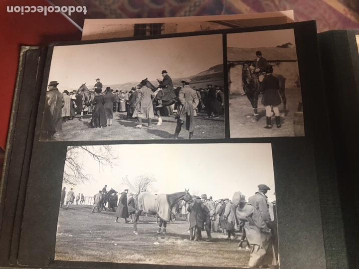 Fotografía antigua: Álbum con fotografías antiguas caza campo Caballos toros agricultura - Foto 9 - 132366993