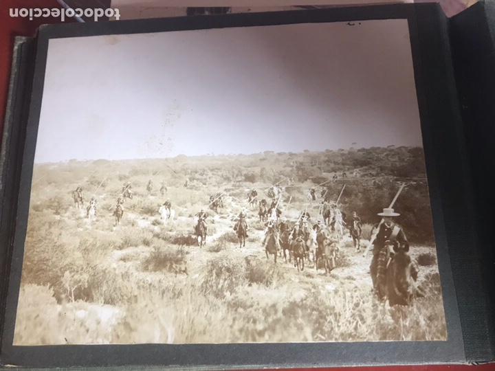Fotografía antigua: Álbum con fotografías antiguas caza campo Caballos toros agricultura - Foto 17 - 132366993