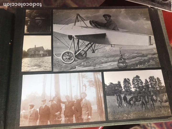 Fotografía antigua: Álbum con fotografías antiguas caza campo Caballos toros agricultura - Foto 18 - 132366993