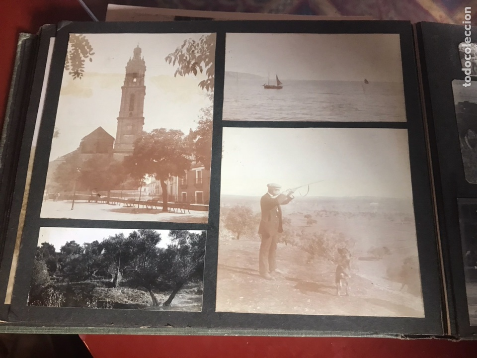 Fotografía antigua: Álbum con fotografías antiguas caza campo Caballos toros agricultura - Foto 19 - 132366993