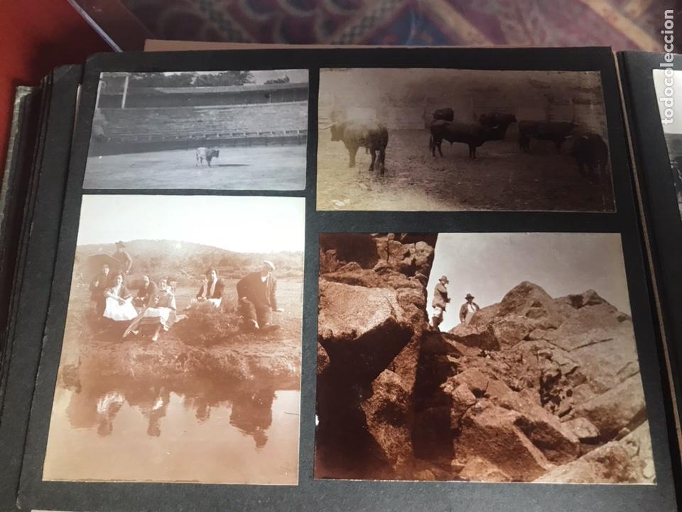 Fotografía antigua: Álbum con fotografías antiguas caza campo Caballos toros agricultura - Foto 23 - 132366993