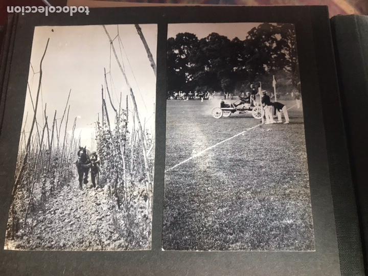 Fotografía antigua: Álbum con fotografías antiguas caza campo Caballos toros agricultura - Foto 25 - 132366993