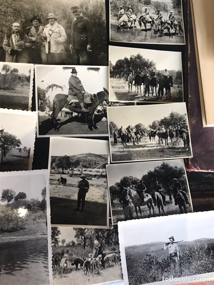 LOTE DE FOTOGRAFÍAS CON ESCENAS DE CAZA MONTERIA (Fotografía Antigua - Fotomecánica)