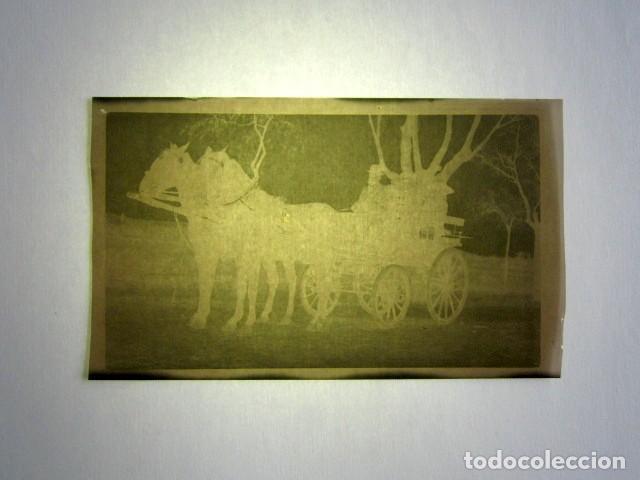 Fotografía antigua: ALCALÁ DE HENARES AÑO 1920. 13 NEGATIVOS DE LA REINA MARÍA CRISTINA, INFANTA ISABEL DE BORBÓN, ETC - Foto 9 - 135798722