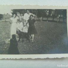 Fotografía antigua: FOTO DE FAMILIA EN EL CAMPO CON PERRO , SOMBRA DEL FOTOGRAFO. OSORNO, 1953. Lote 140003366