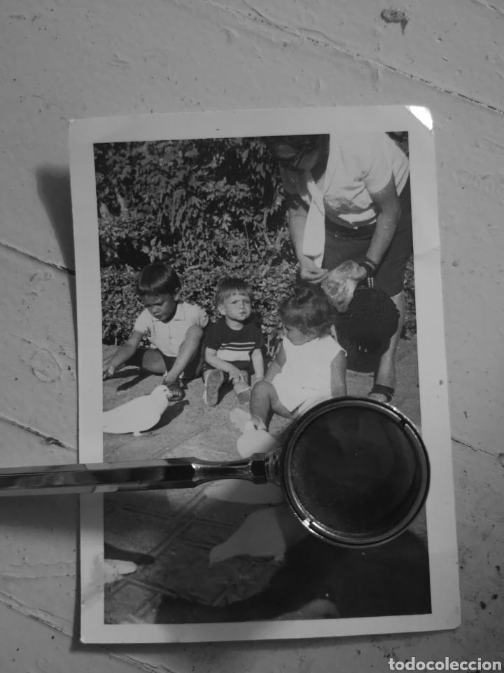 Antigua Fotografia Ninos Jugando Con Palomas B Comprar Fotografia