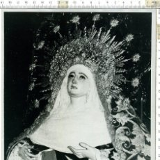 Fotografía antigua: FOTOGRAFIA DE LA VIRGEN MADRE DE DIOS DE LA PALMA , SEMANA SANTA DE SEVILLA 18 X 24 . Lote 144430270
