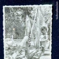 Fotografía antigua: ANTIGUA FOTOGRAFÍA VALENCIA MACASTRE DANDO DE COMER A LOS PATOS. Lote 145046322