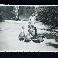 Fotografía antigua: ANTIGUA FOTOGRAFÍA VALENCIA MACASTRE DANDO DE COMER A LOS PATOS. Lote 145049578
