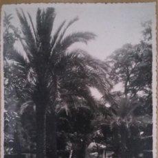 Fotografía antigua: SEVILLA. FOTOGRAFÍA. PARQUE DE MARÍA LUISA, FUENTE DE LOS LEONES. FOTOGRAFÍA SERRANO. AÑOS 50.. Lote 148932434