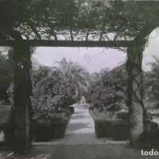Fotografía antigua: SEVILLA. FOTOGRAFÍA. PARQUE DE MARÍA LUISA, FUENTE DE LOS LEONES. FOTOGRAFÍA SERRANO. AÑOS 50.. Lote 148932902