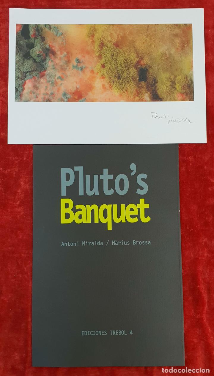 FOTOGRAFÍA ARTÍSTICA. DESCOMPOSICIÓN. PLUTO'S BANQUET. BROSSA Y MIRALDA. 2012. (Fotografía Antigua - Fotomecánica)