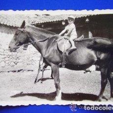 Fotografía antigua: FOTO DE NIÑO PEQUEÑO MONTADO EN UN CABALLO. Lote 151627790