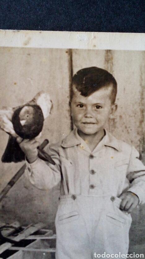 Fotografía antigua: CTC - AÑO 1958 - NIÑO CON PALOMA (lote 2) -AÑOS 50 - FOTOGRAFIA ANTIGUA. - Foto 2 - 154446278