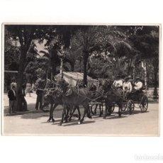 Fotografía antigua: CÓRDOBA.- FERIA NUESTRA SEÑORA DE LA SALUD. COCHE DE CABALLOS. 12 X 17 CM. Lote 165322162