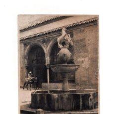 Fotografía antigua: CÓRDOBA.- FUENTE DEL POTRO. 12 X 17 CM. Lote 165328746
