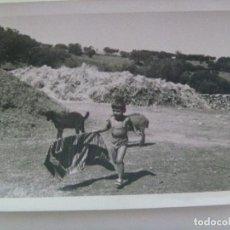Fotografía antigua: FOTO DE NIÑO EN PANTALON CORTO TOREANDO UNA CABRA. Lote 165391174