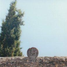 Fotografía antigua: BURGOS. AÑO 2000.. Lote 167155152
