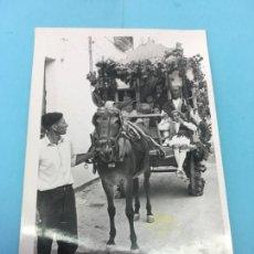 Fotografía antigua: CARRO CON MULA DECORADO PARA ALGUN DESFILE, PROVINCIA DE VALENCIA. Lote 170415296