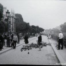 Fotografía antigua: DANDO DE COMER A LAS PALOMAS EN PARÍS. Lote 171642399