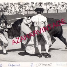 Fotografía antigua: SEVILLA, 1992, FOTOGRAFIA DE LA TRAGICA COGIDA DE MANOLO MONTOLIU, 24X18 CMS. Lote 172641668