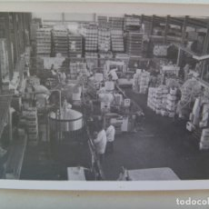 Fotografía antigua: FOTO DEL INTERIOR DE UNA BODEGA, TRABAJADORES EMBASANDO VINO. JEREZ DE LA FRONTERA, 1977. Lote 173022788