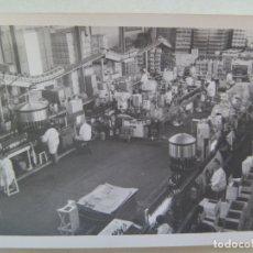 Fotografía antigua: FOTO DEL INTERIOR DE UNA BODEGA, TRABAJADORES EMBASANDO VINO. JEREZ DE LA FRONTERA, 1977. Lote 173026587