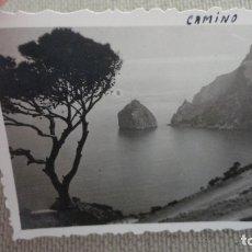 Fotografía antigua: ANTIGUA FOTOGRAFIA.CAMINO DE FORMENTOR.MALLORCA AÑOS 50. Lote 174044422