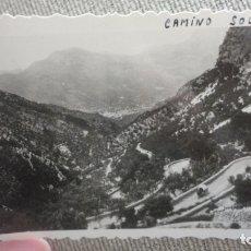 Fotografía antigua: ANTIGUA FOTOGRAFIA.CAMINO DE SOLLER.MALLORCA AÑOS 50. Lote 174044537