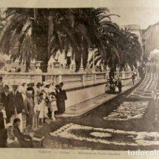Fotografía antigua: 24 FOTOGRAFÍAS SANTA CRUZ DE TENERIFE, CANARIAS. 28 X 22 CM. . Lote 176084868