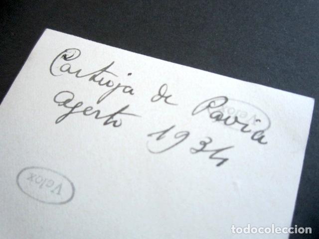 Fotografía antigua: AÑO 1934. CARTUJA DE PAVIA. ITALIA. ANTIGUA FOTOGRAFÍA. 6,4 X 10,6 CM. - Foto 2 - 176822123