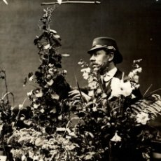 Fotografía antigua: BOTÁNICA BOTANY BOTANIQUE BOTANIK FONDS VICTOR FORBIN 1864-1947. Lote 183211827