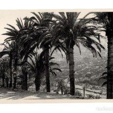 Fotografía antigua: SANTA CRUZ DE TENERIFE.- VISTA PANORÁMICA. FOTO E. BAENA. 19X29.. Lote 191342463