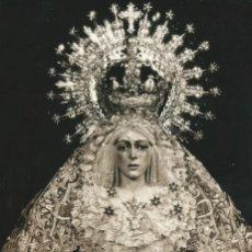 Fotografía antigua: SEVILLA SEMANA SANTA, ESPERANZA MACARENA, ESTUDIO DIHOR. Lote 191593422