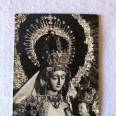 Fotografía antigua: GLORIAS SEVILLA. ANTIGUA FOTOGRAFÍA DE LA VIRGEN DEL AMPARO. AÑOS 40/50. 9X14. Lote 194934947