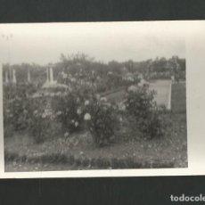 Fotografía antigua: ANTIGUA FOTOGRAFIA. Lote 195193133