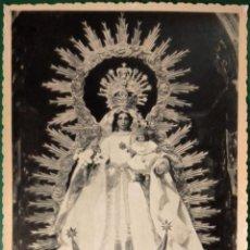 Fotografía antigua: SEVILLA, IMAGEN GLORIOSA DE LA VIRGEN DEL PATROCINIO. HERMANDAD DEL CACHORRO. AÑOS 50.. Lote 195503311